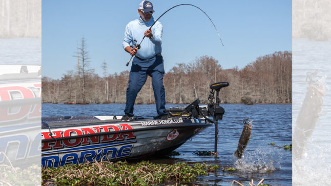 January and February can be tough months for finding and catching bass, but this is one of the best times for fishing shallow Bogue Homa Lake.