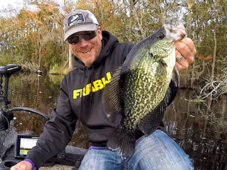 Every slab crappie was small once. Effects of environmental conditions on growth and survival of young fish determines future fishing.